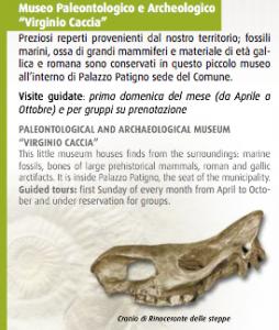 """Museo """"Virginio Caccia"""" - descrizione"""