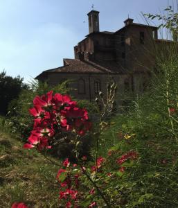 Parco del Castello - i fiori